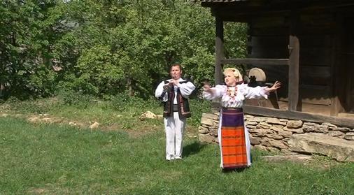 Sava Negrean Brudascu - Multe m