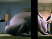 Ya un gros lapin dans le salon