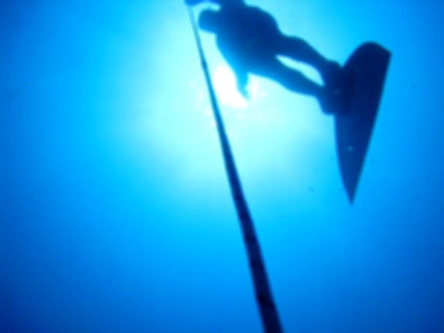 Freediving in Israel - Training Day