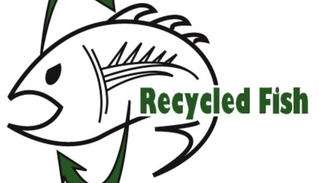 Recycled Fish Sizzle
