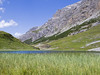Alta Valtellina-Nature in Alpisella Valley