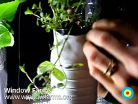 Window Farms by Britta Riley (interview with Maya Nayak) / Eyebeam Open Studios Fall 2009 / SML