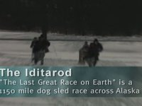 The Iditarod at North Park Schools