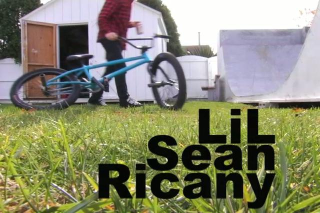 Sean Ricany Premium Video video on savevid.com. Download videos in flv, mp4, avi formats ea 1