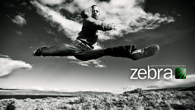 Gabriel Bienczycki - Zebra Visual Demo Reel 2010
